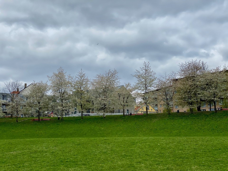This image has an empty alt attribute; its file name is oslo-park.jpg